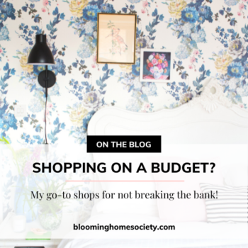 budget friendly shopping